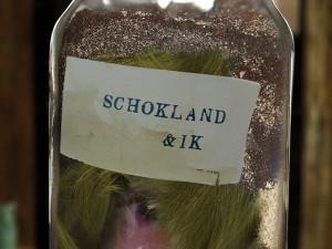 Schokland & ik